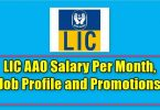 LIC AAO Salary Per Month, Job Profile and Promotions