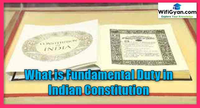 What is Fundamental Duty in Indian Constitution