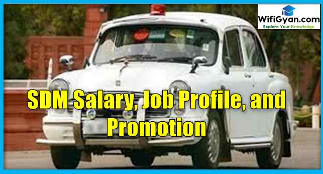 SDM Salary, Job Profile, and Promotion