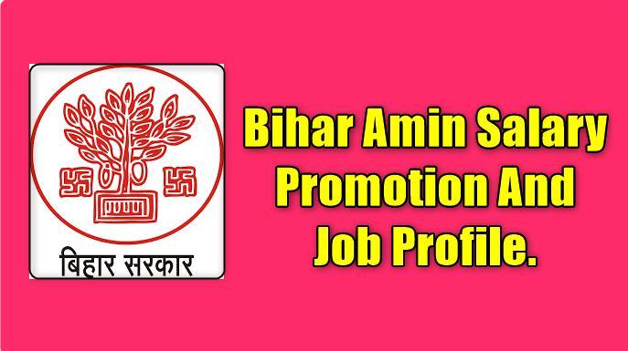 Bihar Amin Salary Promotion and Job profile.